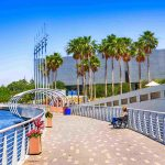 5 Awesome Things to Do in Tampa, Florida