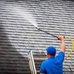 How to Choose a Roof Cleaner for Your Needs